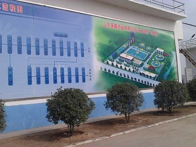 山东省临沂市某厂